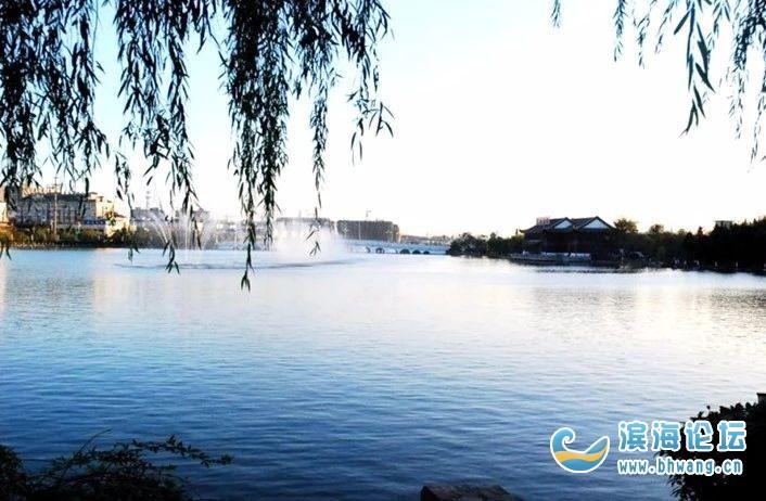 城市里的飞鸟 ▲滨海港 ▲灵龙湖生态公园 ▲南湖公园
