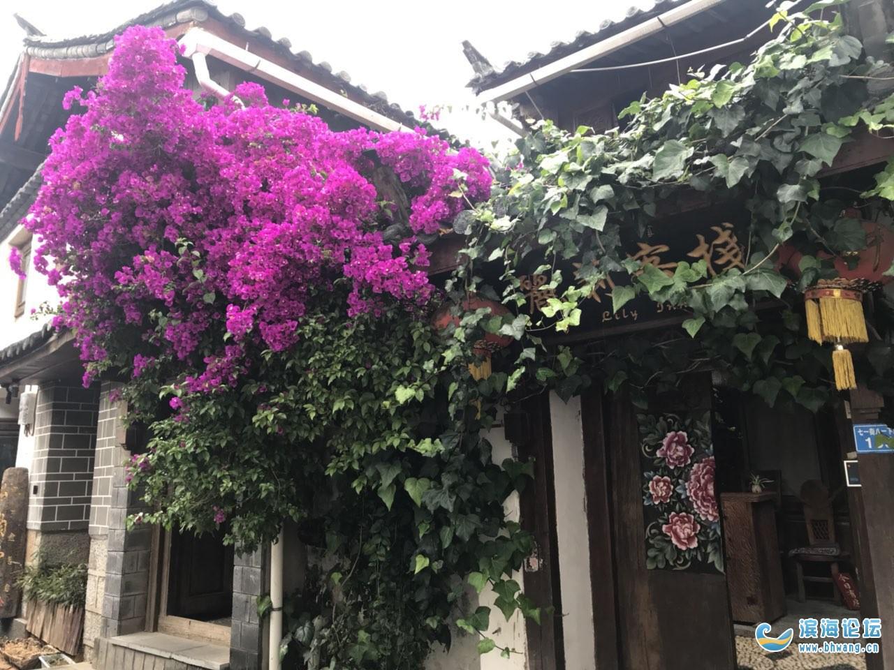 有没有家是滨海的,人在上海的女士