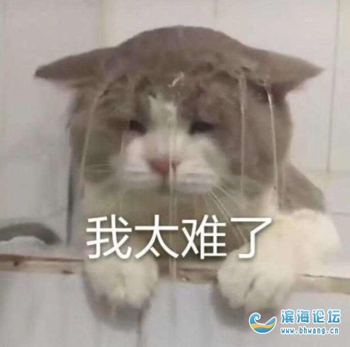 请问江南新城幼儿园没有房产证可以读吗?