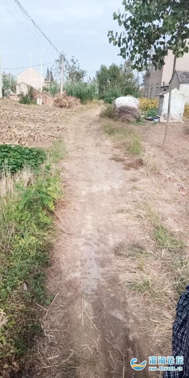 這條路何時能修?請看陳濤五層幾十年的爛泥路
