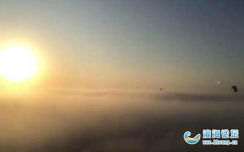 """初冬的早晨,滨海""""美若仙境""""……"""