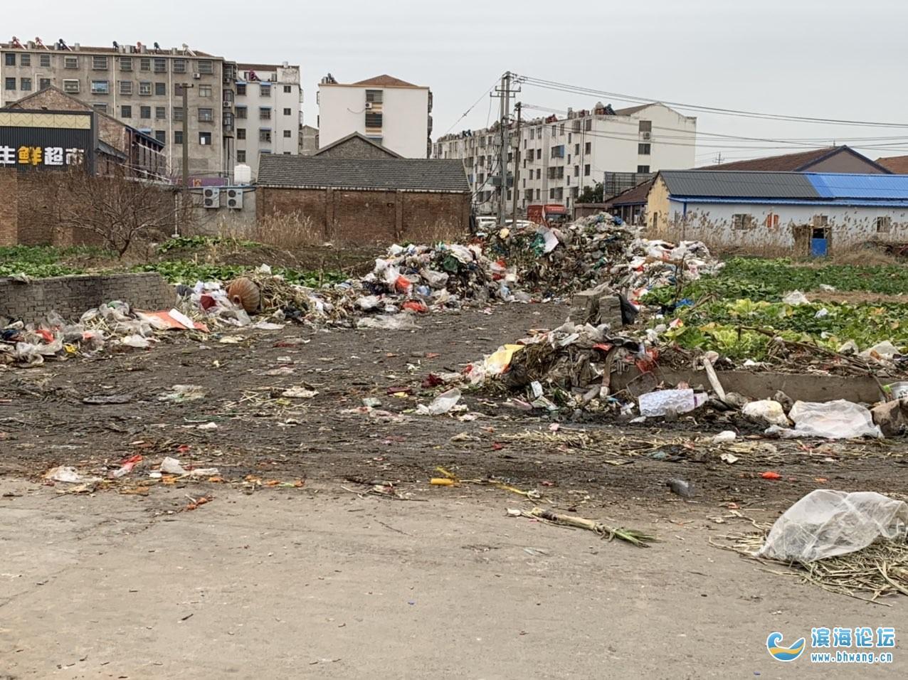 五汛—触目惊心的垃圾堆场