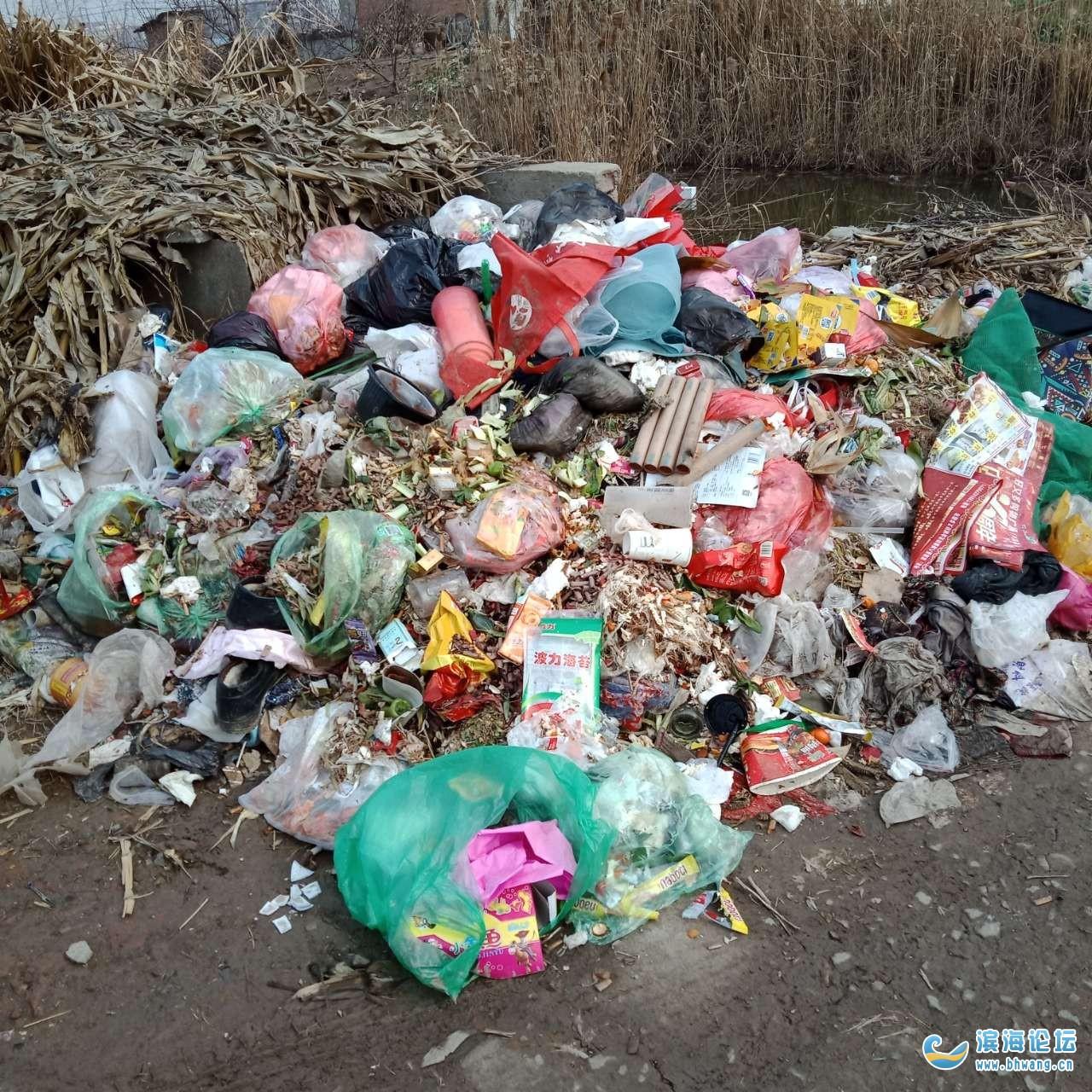 粮西老三七队垃圾堆成山没人拖