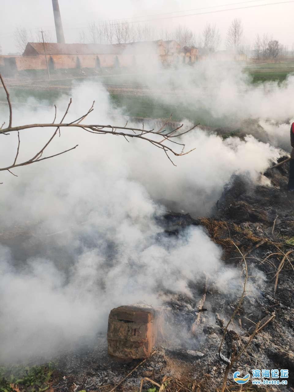 近来肖港村天天有人焚烧沟边的枯草,火势顺着风一直烧到我们门前