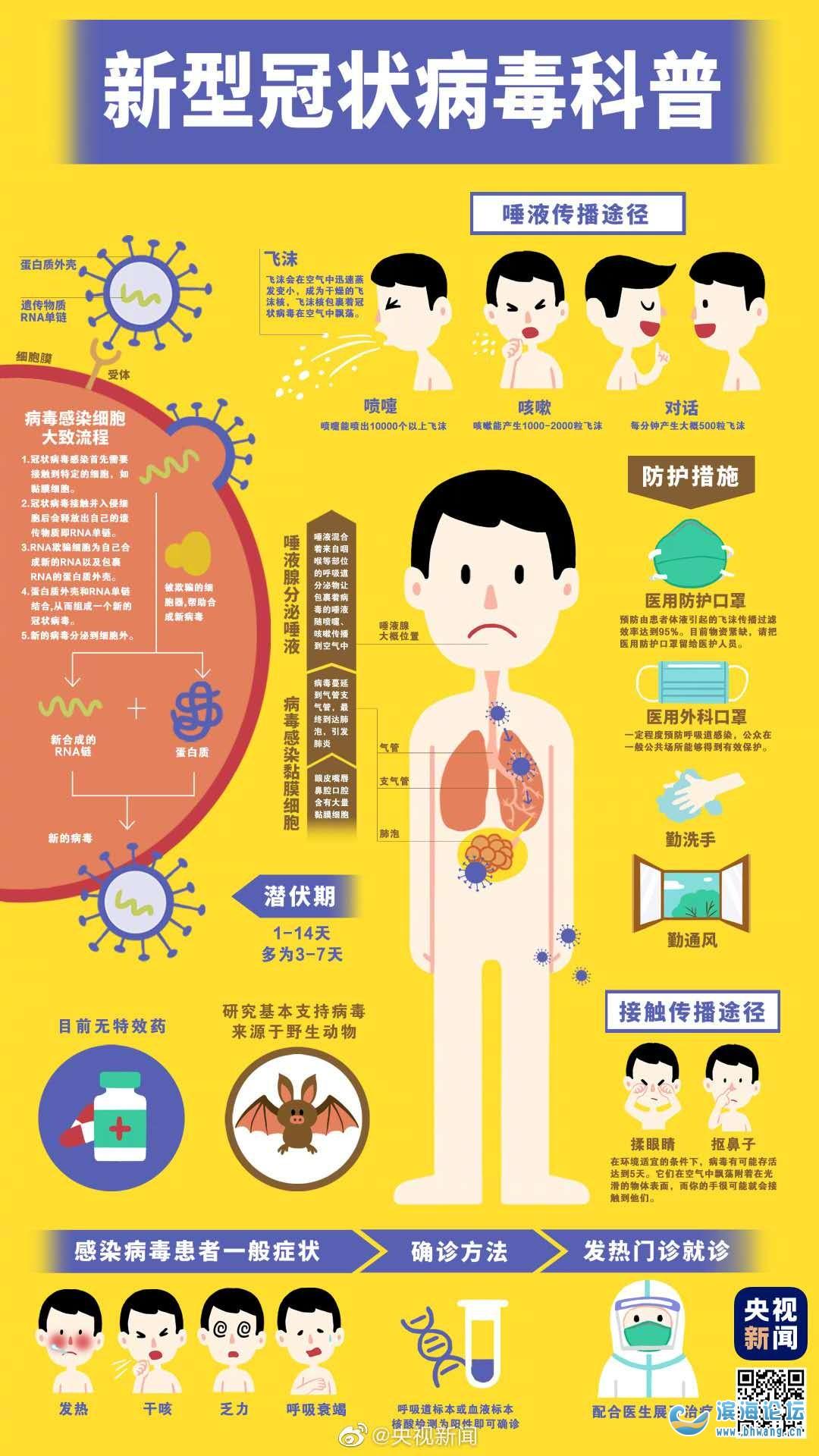 科普贴:一张图看懂新型冠状病毒