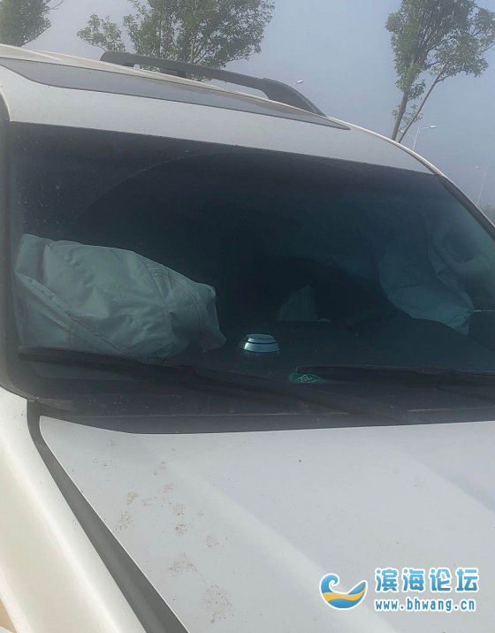 濱海火車站前發生一起單方交通事故,一SUV沖上花池30米!
