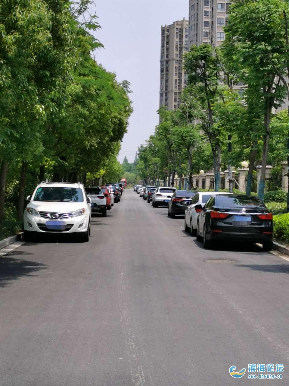 水韵新城、博士苑西门多么好的路竟然成了停车场!