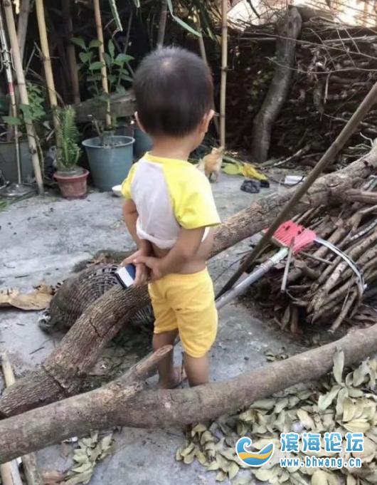 这小孩子的气质长大了适合什么职位?