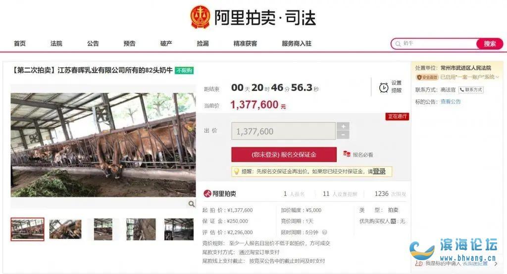 江苏一知名乳业公司老板成老赖!82头奶牛被拍卖!特殊标注:乳牛较瘦……