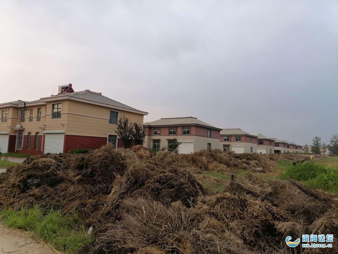 滨海港经济区友谊小区居民吃了多少年的地下水