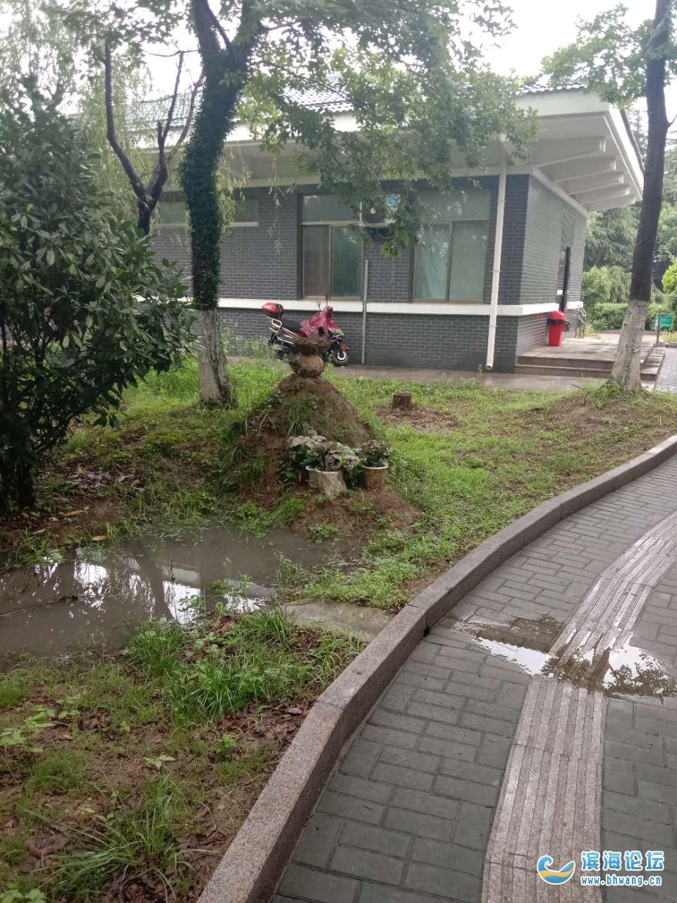 东明汽车站对面公厕绿化带内建了一座坟属于违建么?