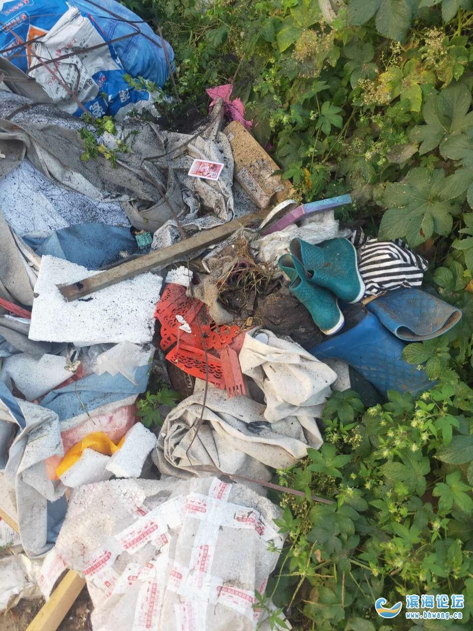 坎北街道西坎村原八组一垃圾池一个多月没人问,臭气熏天