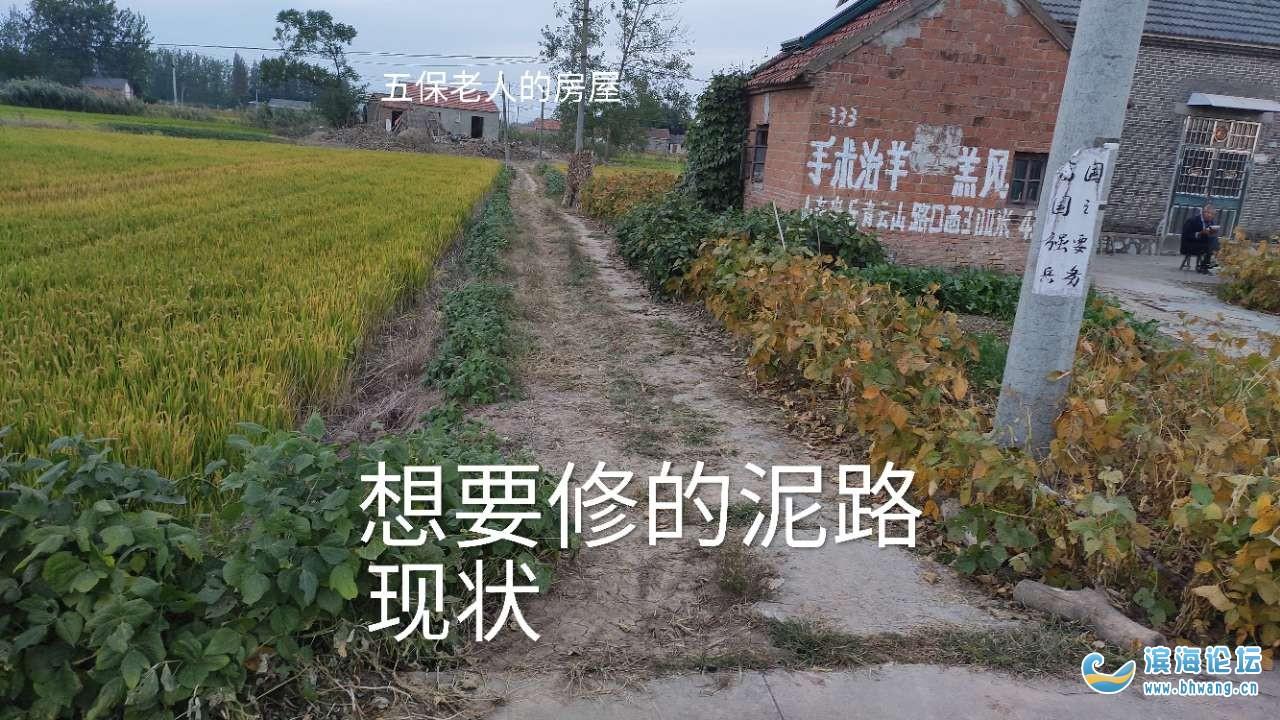 五保残疾老人自费修1米进出路水泥路,村干部竟不支持修路!