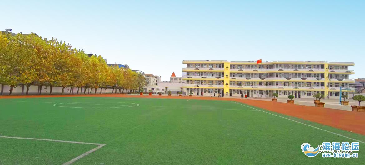 美呆了!初冬,滨海这些校园的美景值得一看!