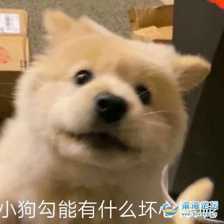 徐州还能回大滨海过年吗?有没有啥要求?